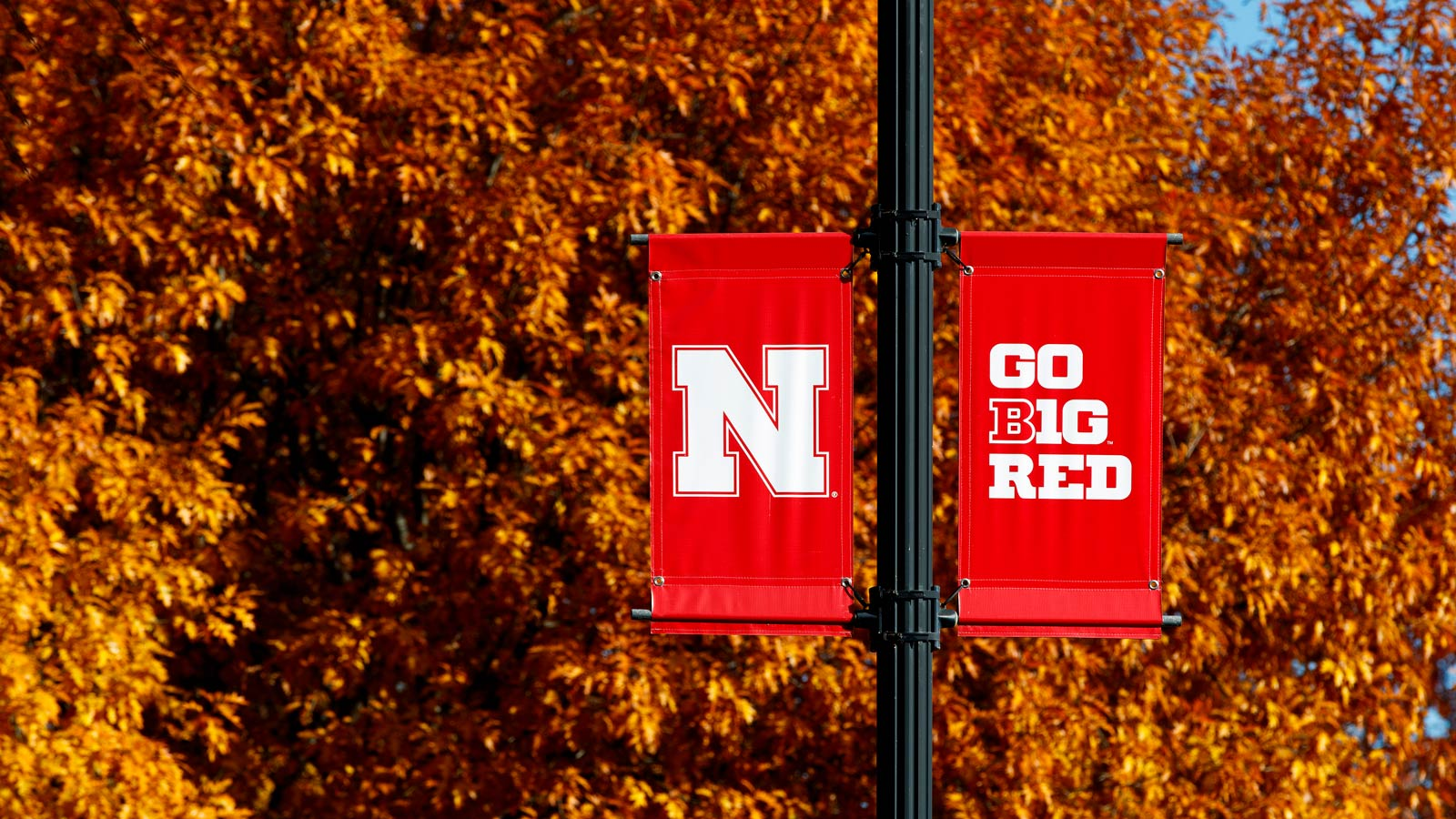 Campus sign with fall leaves