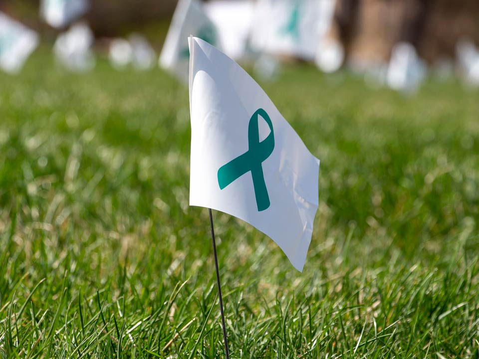 Teal ribbon on lawn flag for sexual assault awareness