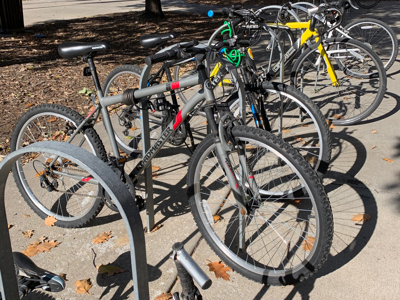 Bicycles parked in a bike rack at the Nebraska Union.