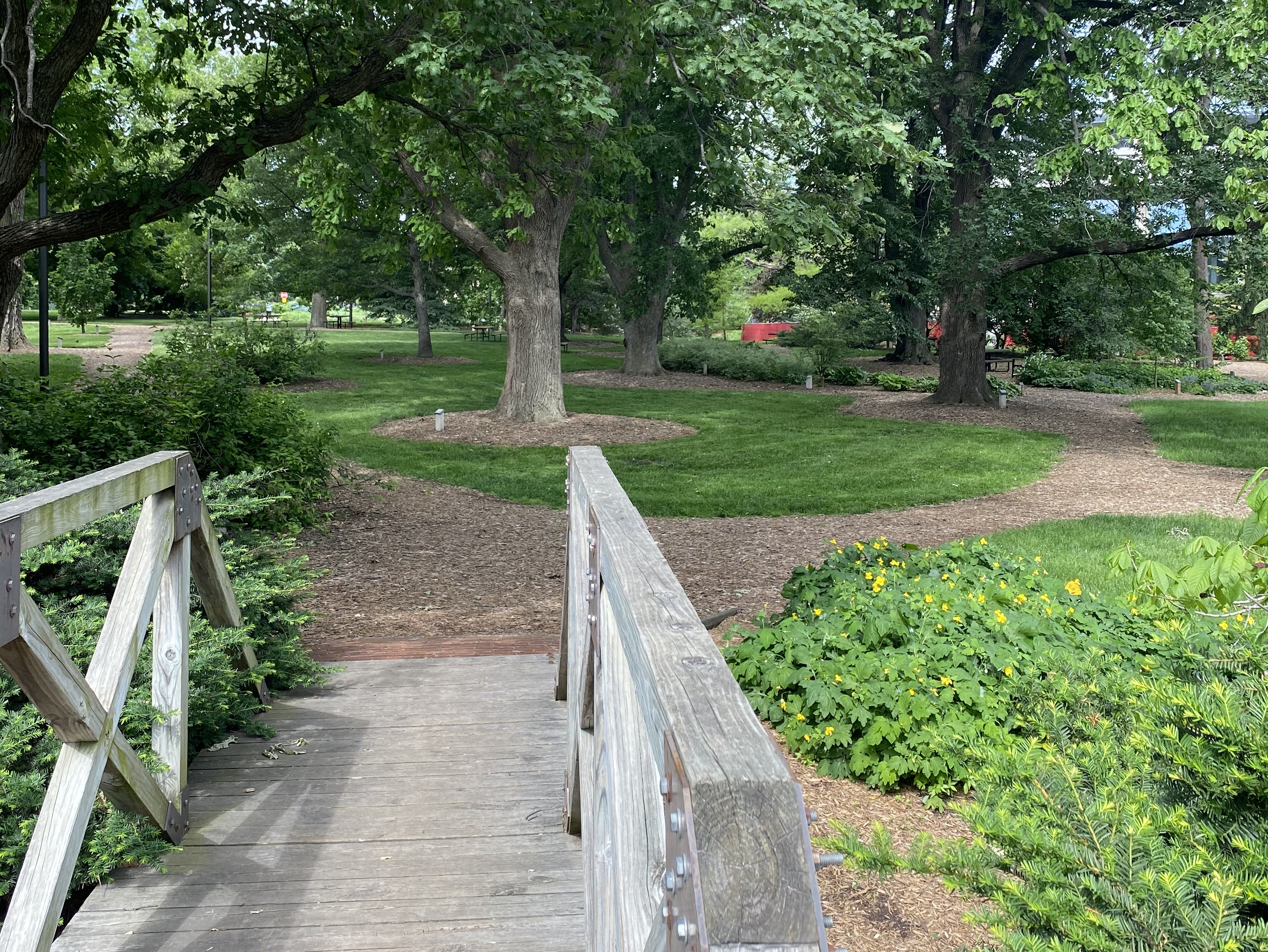 Maxwell Arboretum [Brittany Meiners   Student Affairs]