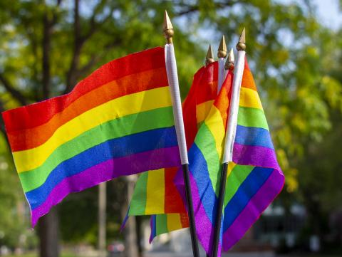 A fistful of LGBTQA+ pride flags. [Mike Jackson   Student Affairs]