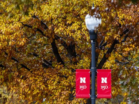 Fall leaves with Nebraska banner