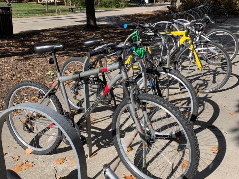 Bikes in racks on campus